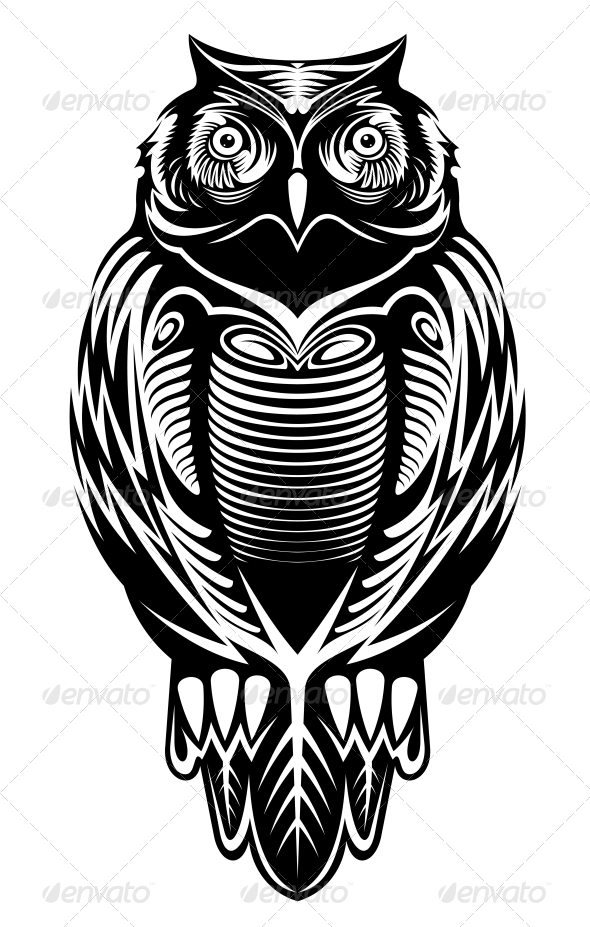 Majestic Owl By Vectortradition Graphicriver
