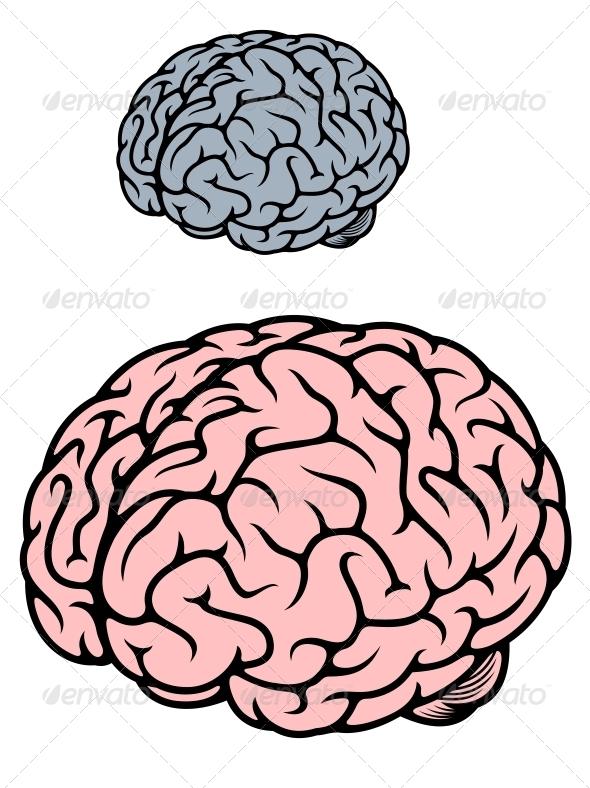 Human Brain - Health/Medicine Conceptual