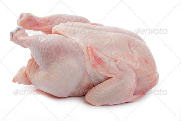 Crude Hen on a white background - Stock Photo - Images