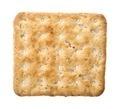 Cracker - PhotoDune Item for Sale