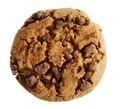 Chocolate cookie - PhotoDune Item for Sale