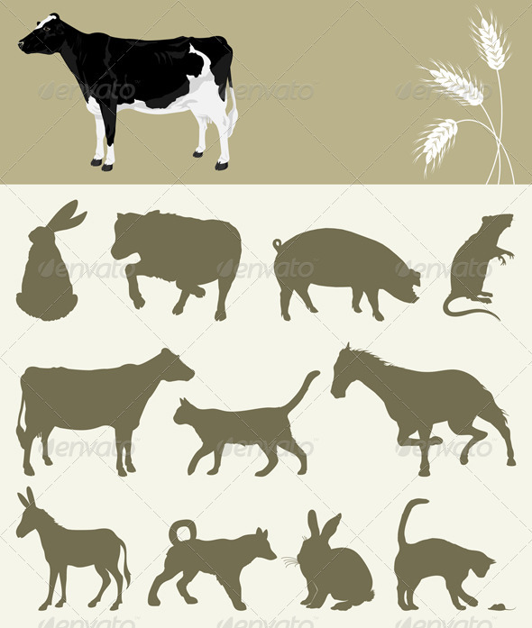Animal of a farm - Animals Characters