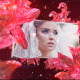 Wedding Fairy - VideoHive Item for Sale