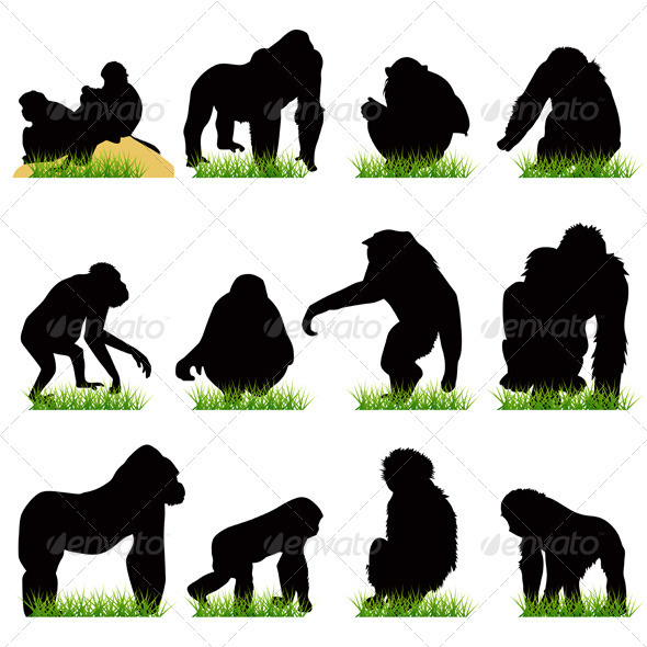 12 Monkeys Silhouettes Set - Animals Characters