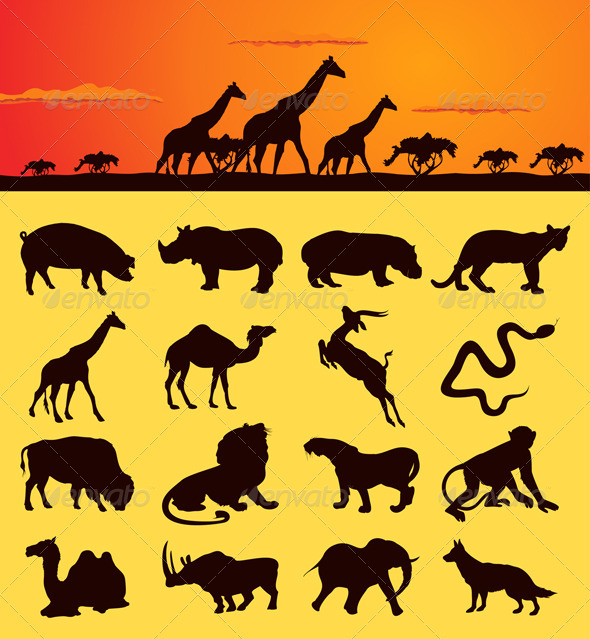 African animals2 - Animals Characters