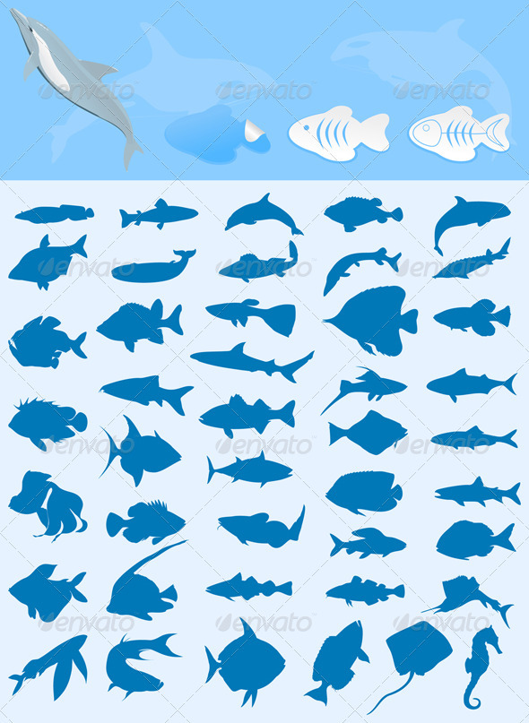 Collection of fishes - Animals Characters