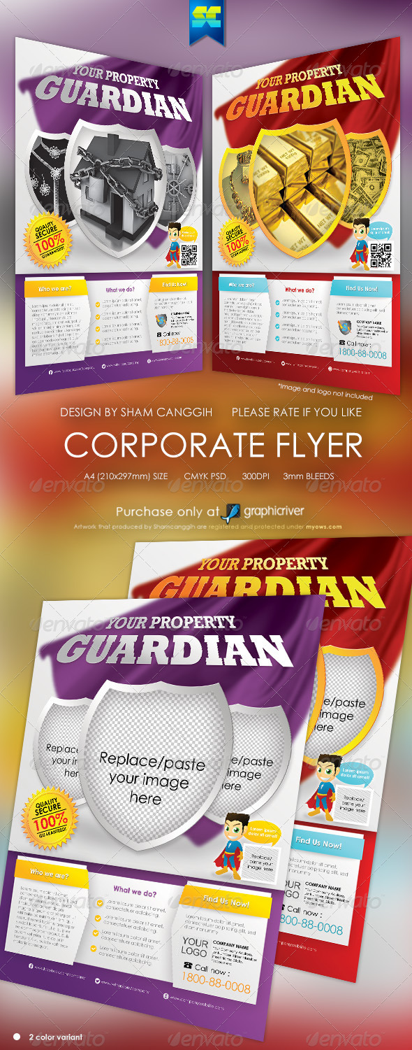 Clean Security And Insurance Modern Flyer - Corporate Flyers