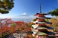 Mt. Fuji and Pagoda in Autumn - PhotoDune Item for Sale