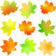 Vector Set Autumn Maple Leaf - GraphicRiver Item for Sale