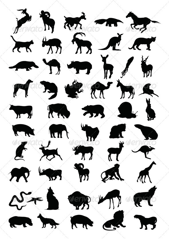 Animal - Animals Characters