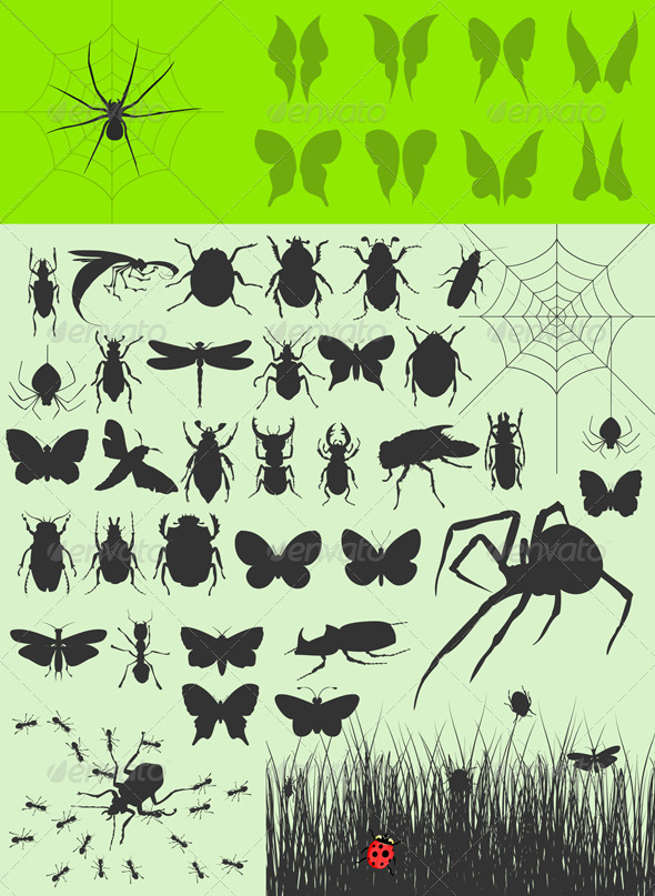 Collection of insects2 - Animals Characters
