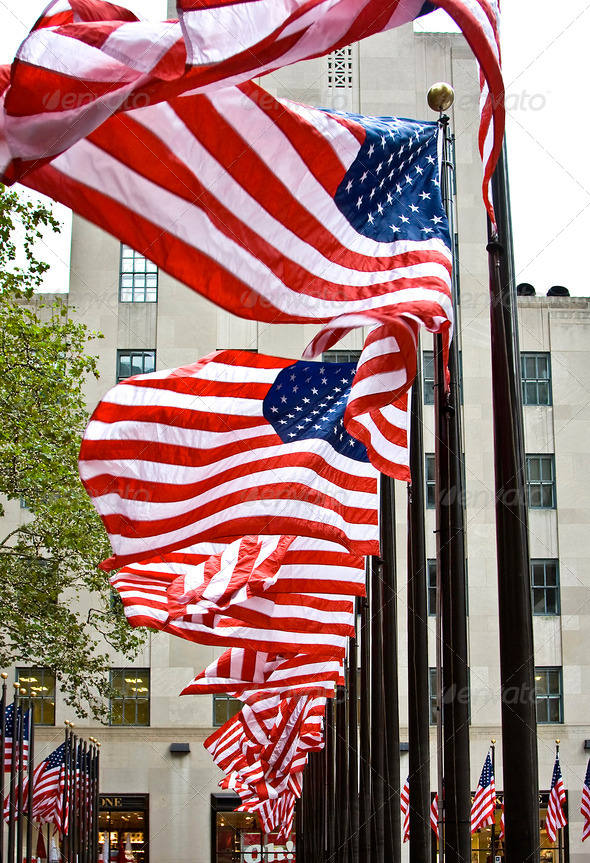 Row of American flags - Stock Photo - Images