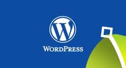 Wordpress WooCommerce Plugins