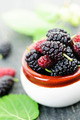 Fresh mulberries - PhotoDune Item for Sale