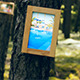 Gallery In The Woods - VideoHive Item for Sale