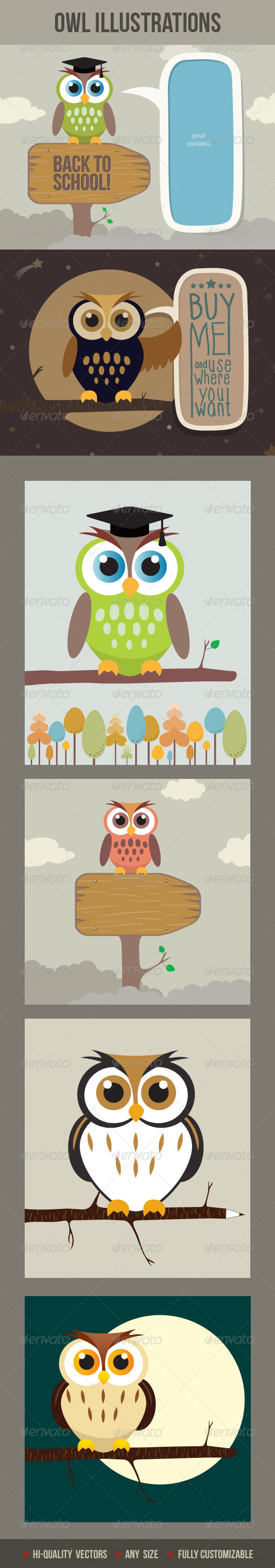 Cartoon Owls - Animals Characters