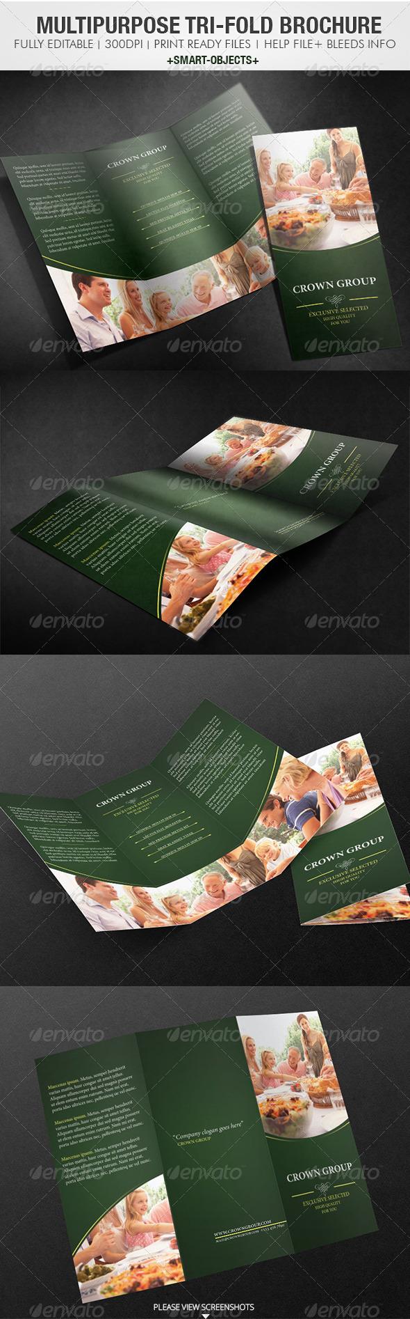 Multipurpose Tri-Fold Brochure - Informational Brochures