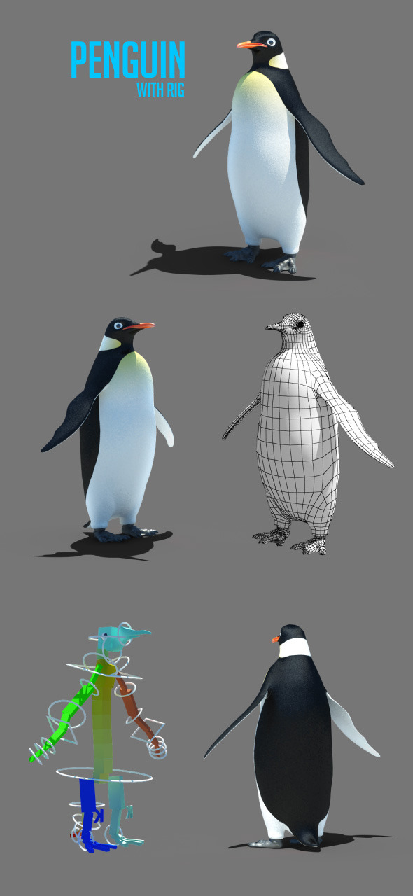 Penguin - 3DOcean Item for Sale