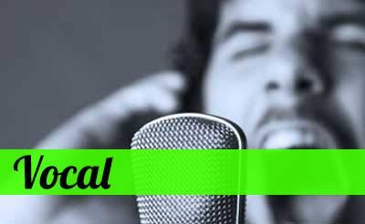 Vocal Stuff !