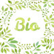 """Word """"Bio"""" in Watercolor Leaves Wreath - GraphicRiver Item for Sale"""