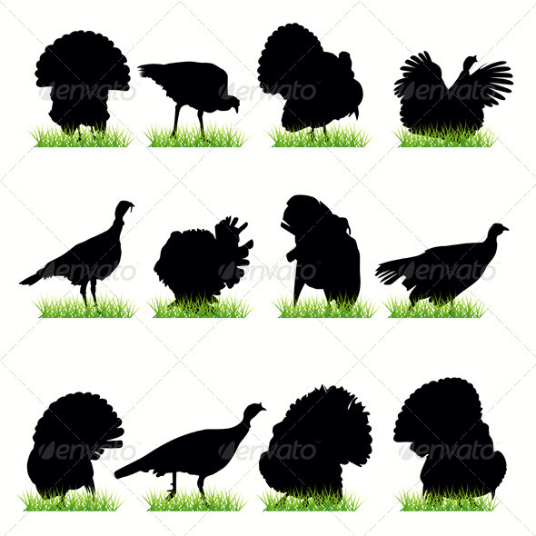 Turkey Silhouettes Set - Animals Characters