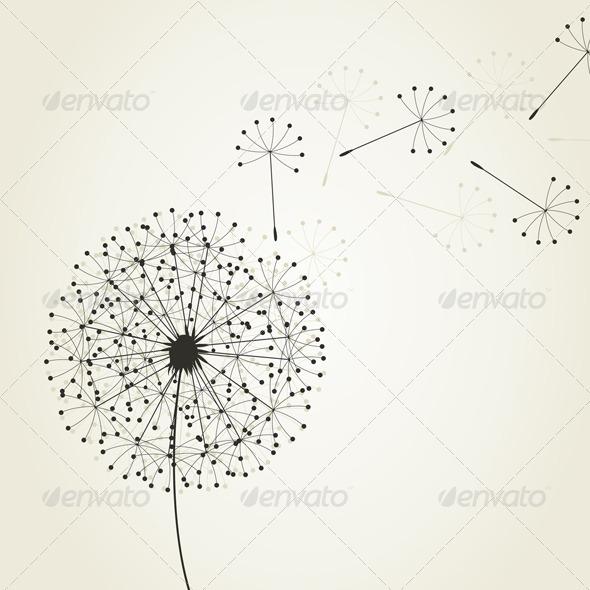 Dandelion4 - Flowers & Plants Nature