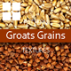 Groats Grains Surface Textures - 3DOcean Item for Sale