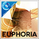Download Euphoria Boxed Slides from VideHive
