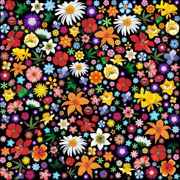 Colorful Spring And Summer Flowers Pattern Plants Nature