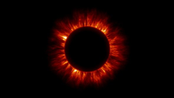 Image result for corona of the Sun