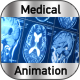 Magnetic Resonance Imaging  - VideoHive Item for Sale