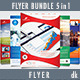 Multipurpose Flyer Bundle 5 in 1 - GraphicRiver Item for Sale