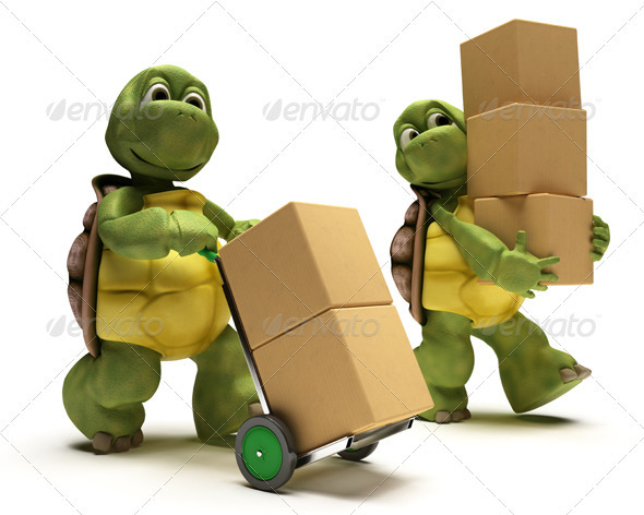 Turtles Carrying Boxes - 3D Backgrounds