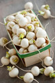 Basket of small turnips - PhotoDune Item for Sale