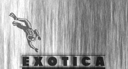 Elevator Muzaks and Exotica Tunes