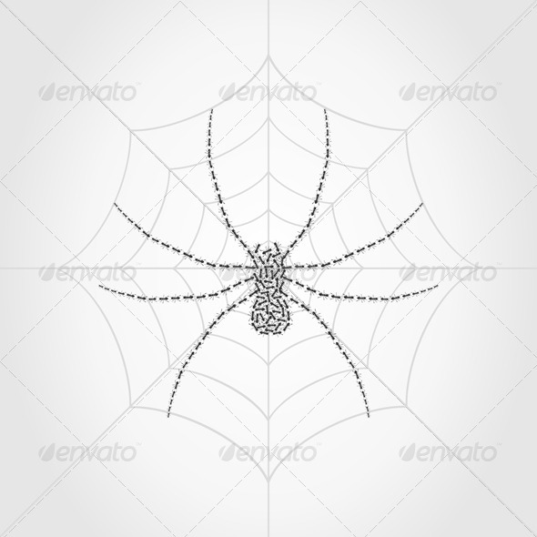 Spider4 - Animals Characters