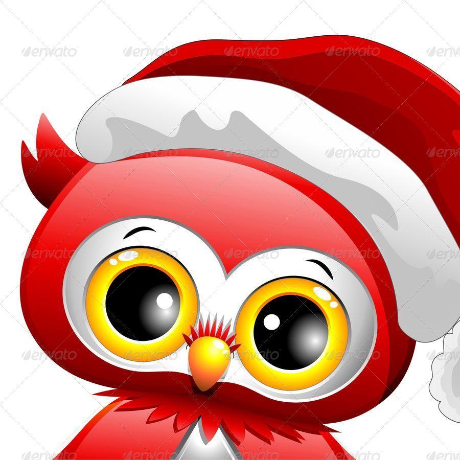 owl christmas santa close up jpg 900jpg - Owl Christmas