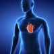 Heart Attack Conceptual Animation For Heart Diseases - VideoHive Item for Sale