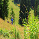 In the Green Mountains - VideoHive Item for Sale