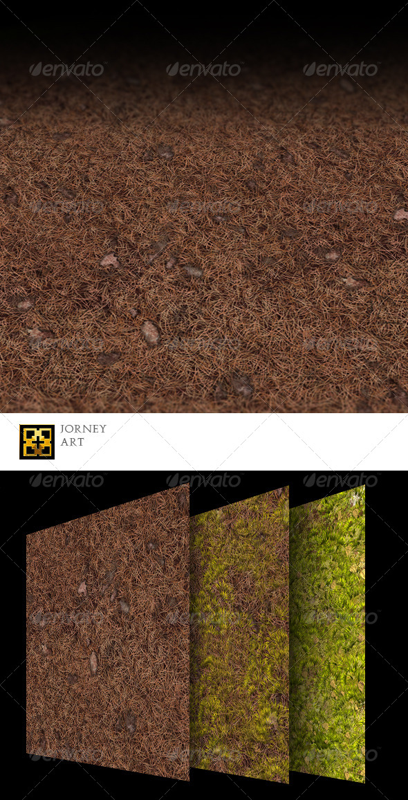Forest Ground Texture Collection  - 3DOcean Item for Sale