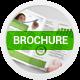 Bi-Fold Brochure 19 - GraphicRiver Item for Sale