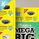 Big Sale Promotion Flyers - GraphicRiver Item for Sale