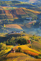 Rural houses and autumnal vineyards in Piedmont, Italy. - PhotoDune Item for Sale