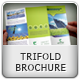 Multipurpose Trifold Brochure - GraphicRiver Item for Sale