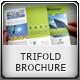 Multipurpose Trifold Brochure - GraphicRiver Item for Sale