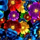 Colorful Flowers  - VideoHive Item for Sale