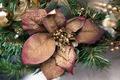Decorative dry flower - PhotoDune Item for Sale