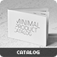 Minimal Catalog 32 Pages - GraphicRiver Item for Sale