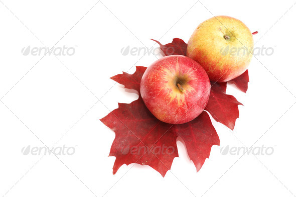 Autumnal fruits on a white. - Stock Photo - Images