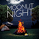 Moonlit Night Flyer